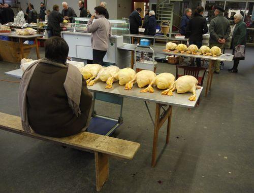 http://serveur2.archive-host.com/membres/images/1336321151/balades/2012-11/gardeuse-doies.jpg