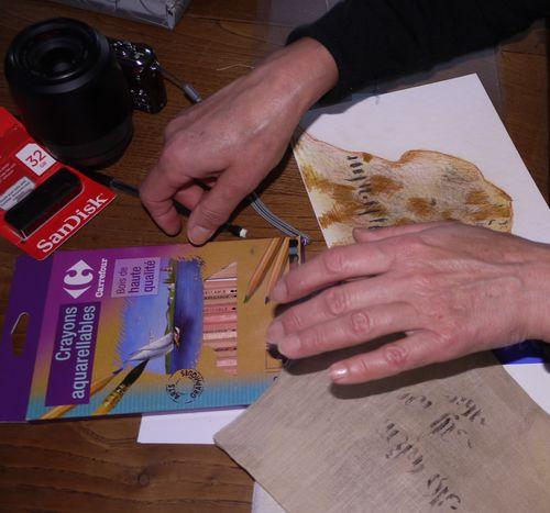 http://serveur2.archive-host.com/membres/images/1336321151/balades/2012-11/kz3-7.jpg