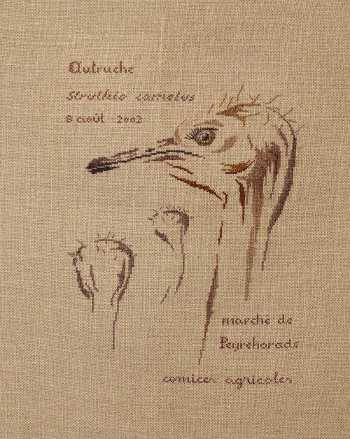 http://serveur2.archive-host.com/membres/images/1336321151/balades/aef/aef2013/mtsa/douze/dz1.jpg
