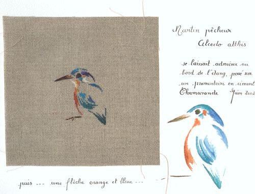 http://serveur2.archive-host.com/membres/images/1336321151/bestioles/oiseaux/martin-pecheur/mp0.jpg