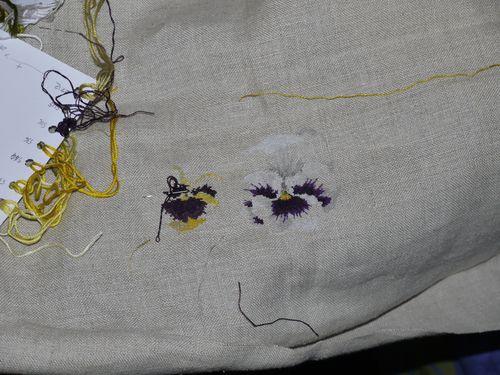 http://serveur2.archive-host.com/membres/images/1336321151/fleurs/Violas/Vilmo/v2-1.jpg