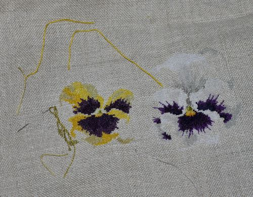 http://serveur2.archive-host.com/membres/images/1336321151/fleurs/Violas/Vilmo/v2-4.jpg