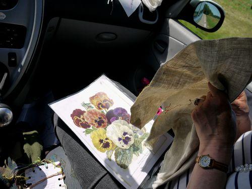 http://serveur2.archive-host.com/membres/images/1336321151/fleurs/Violas/Vilmo/v3-0.jpg