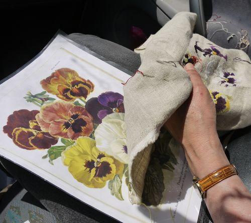 http://serveur2.archive-host.com/membres/images/1336321151/fleurs/Violas/Vilmo/v3-1.jpg